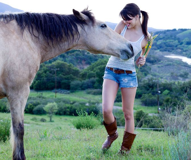 1joy_horse_4518579.jpg
