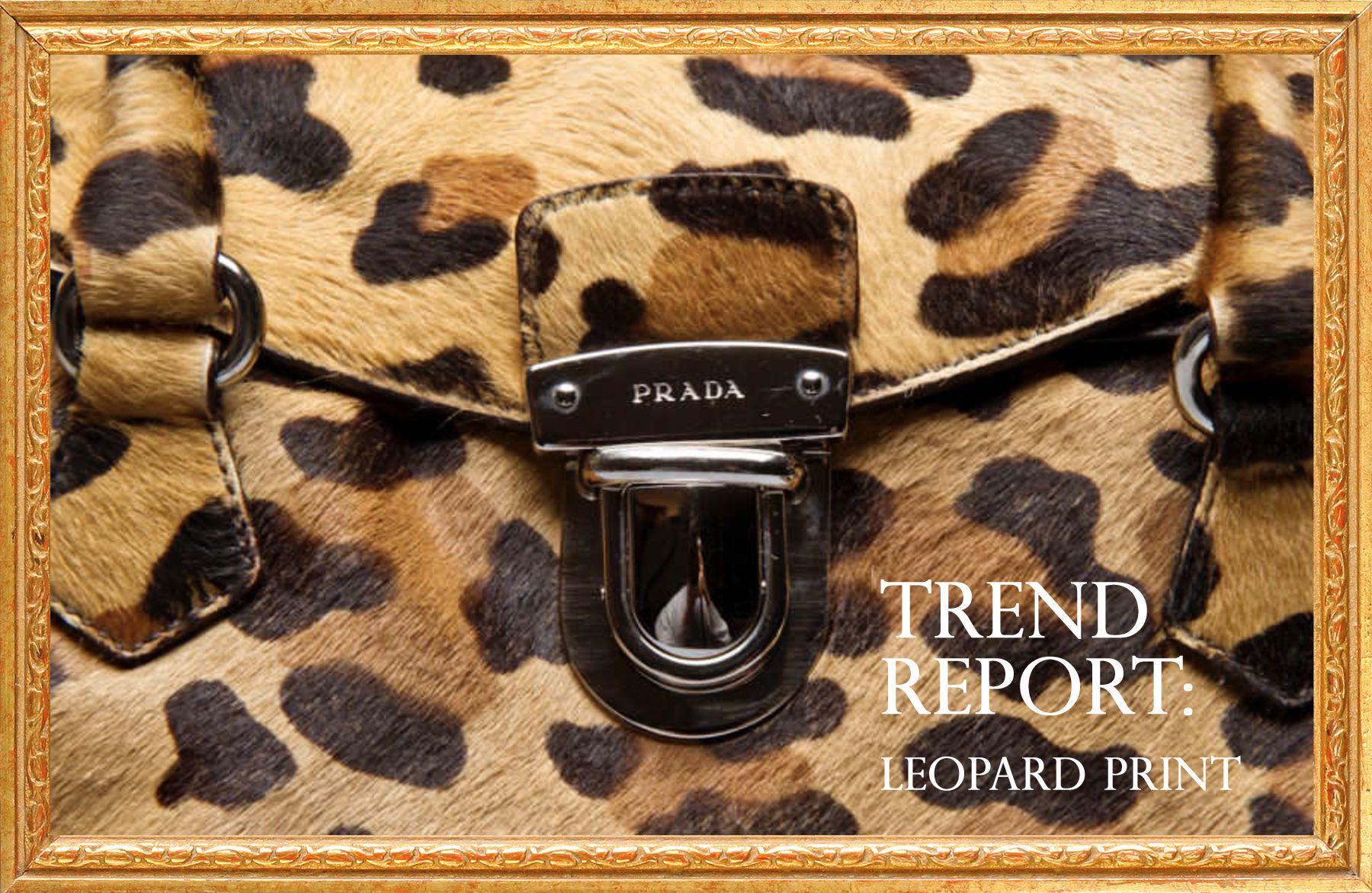 leopard print.jpg