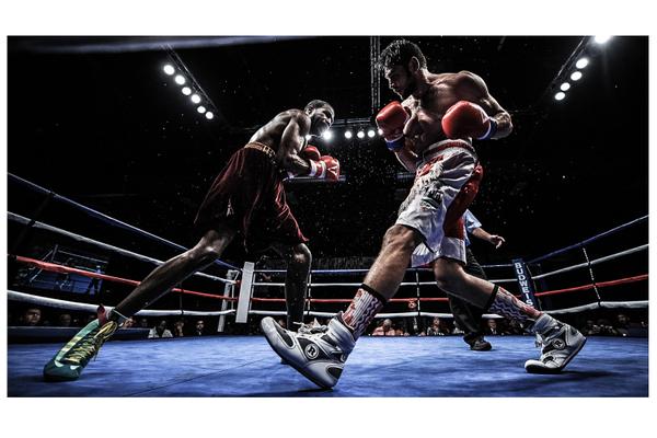 Professional Boxers/EQC