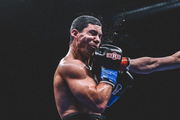Professional Boxer/EQC