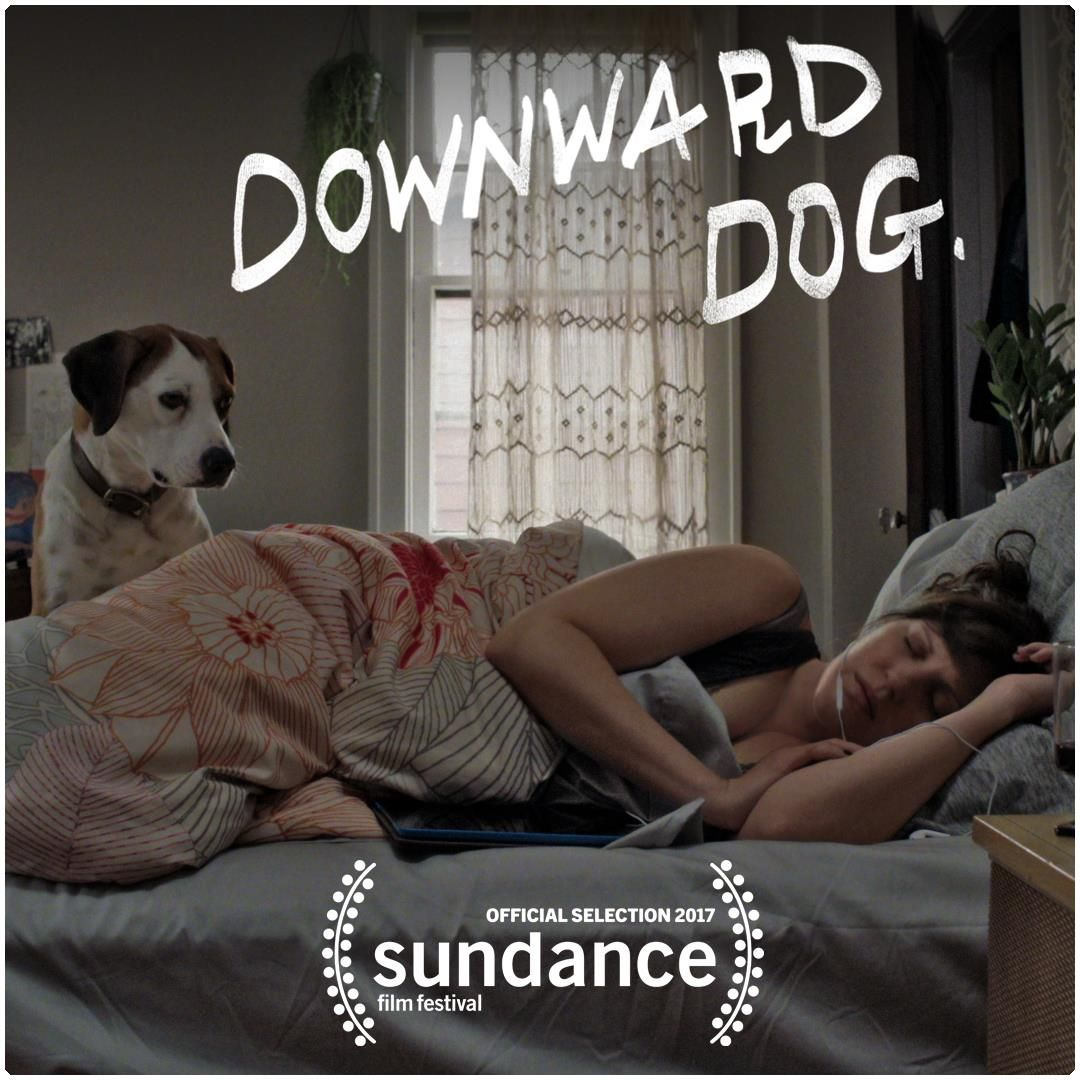 downward_dog_sundance_abc_gary_kordan_production_design.jpg
