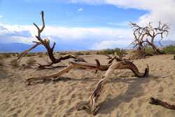 Death Valley April 2014 070.jpg