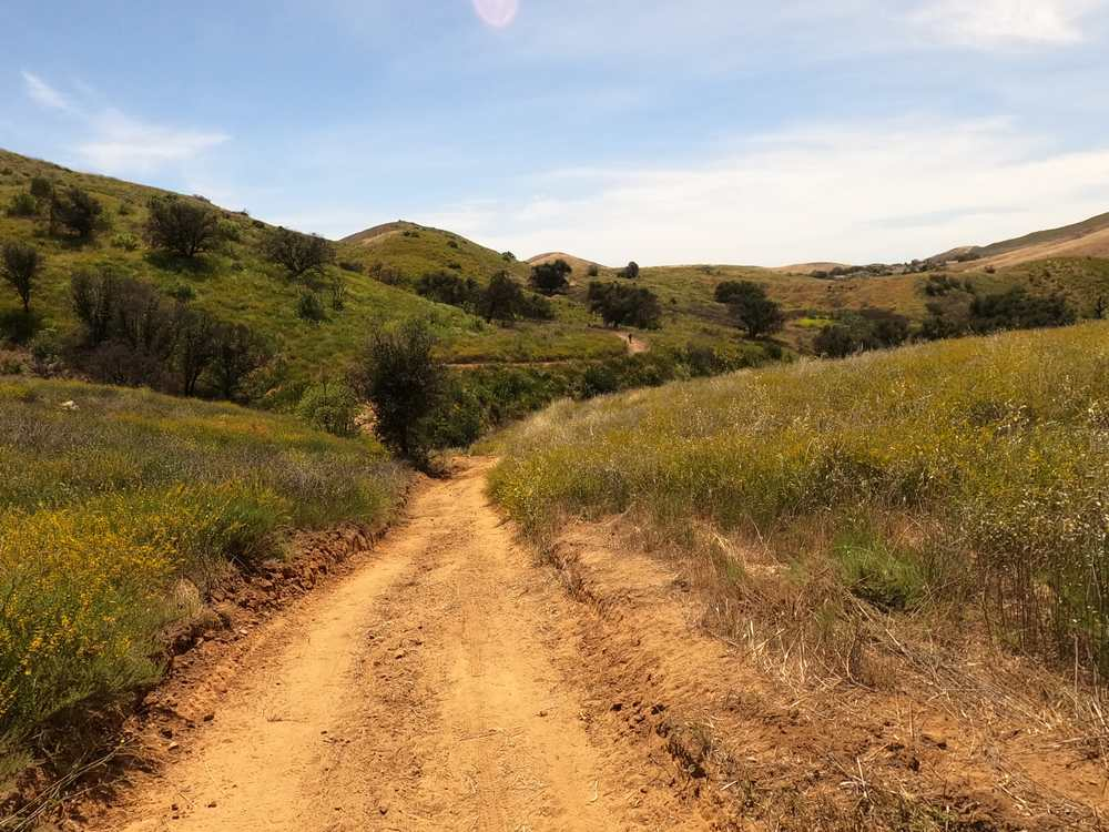 Challenger Park Trail.