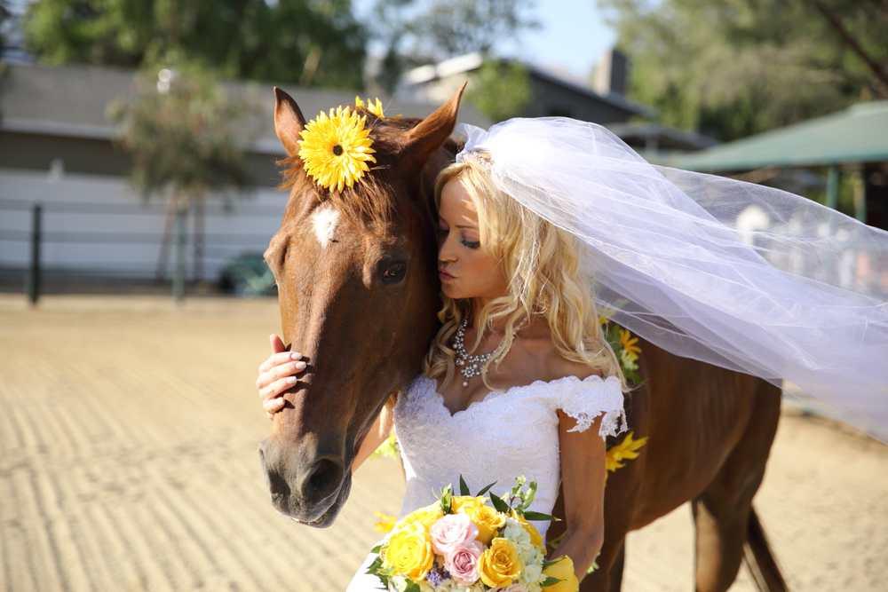 148-Dean & Darlene Wedding 389.jpg