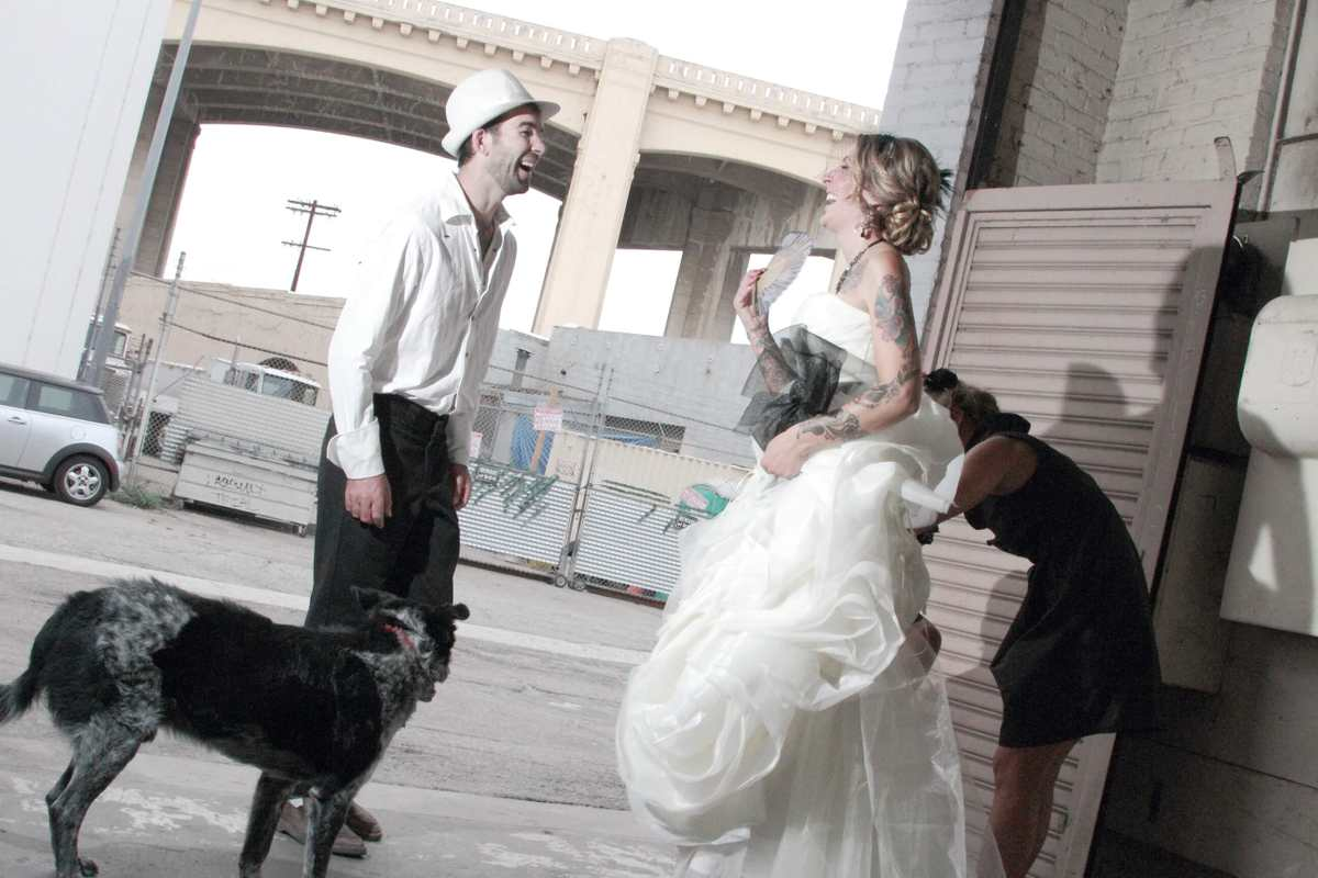 Dogs and weddings?  No problem.