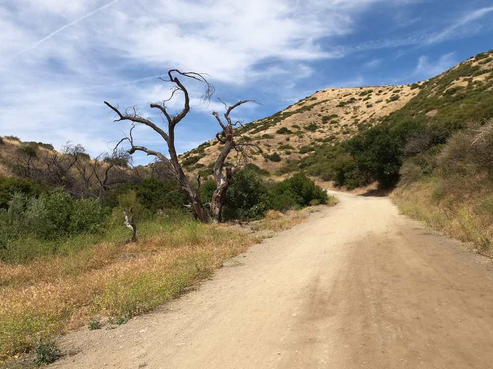 hiking photo of Las Llajas trail