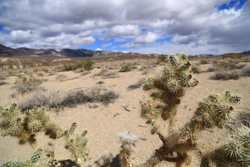 Death Valley April 2014 022.jpg