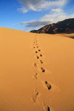 Death Valley April 2014 363.jpg