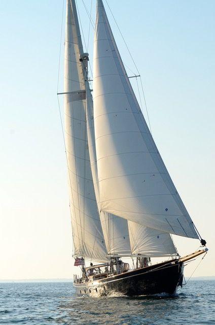 lelanta sailing.jpeg