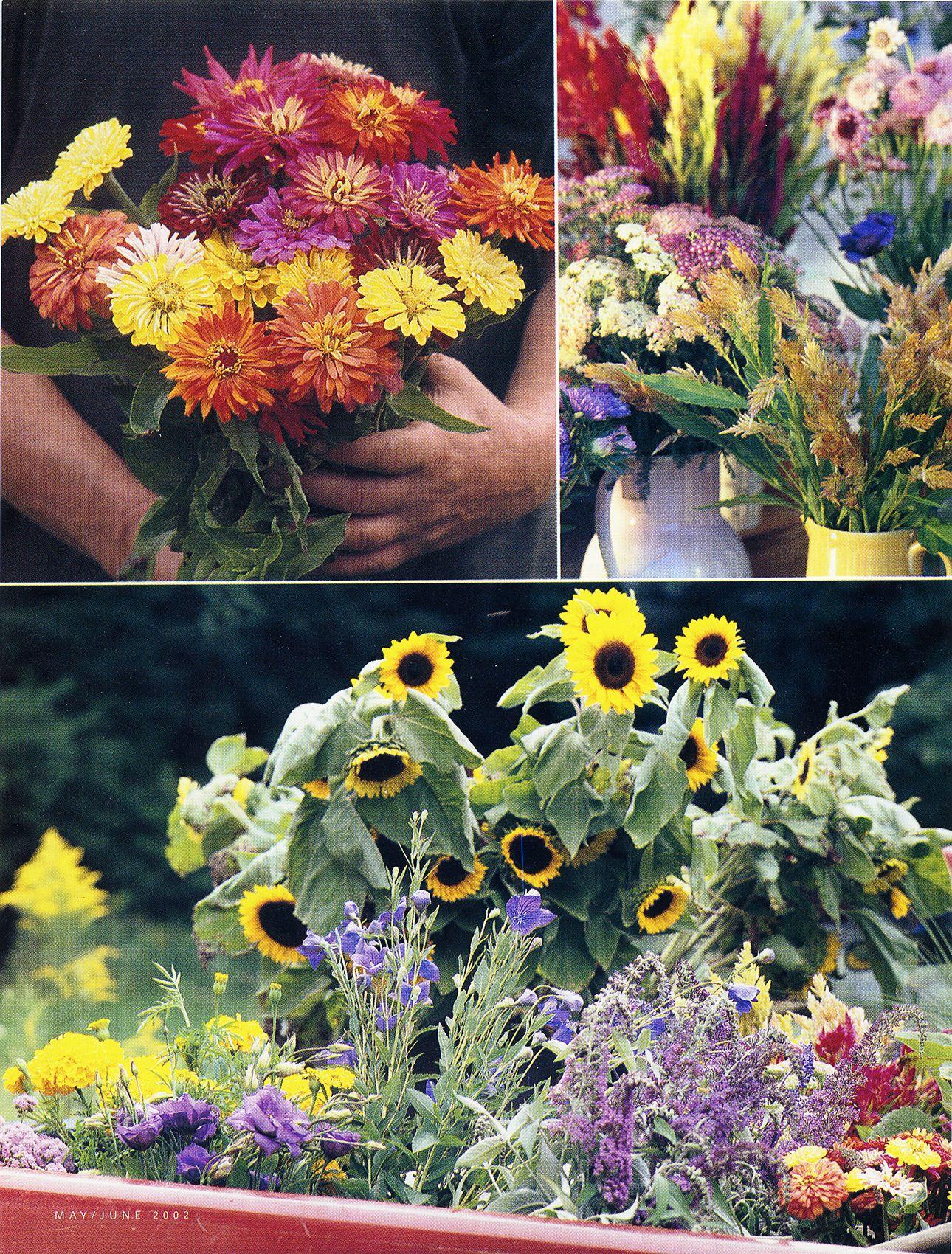 Horticulture-MayJune2002-1.jpg