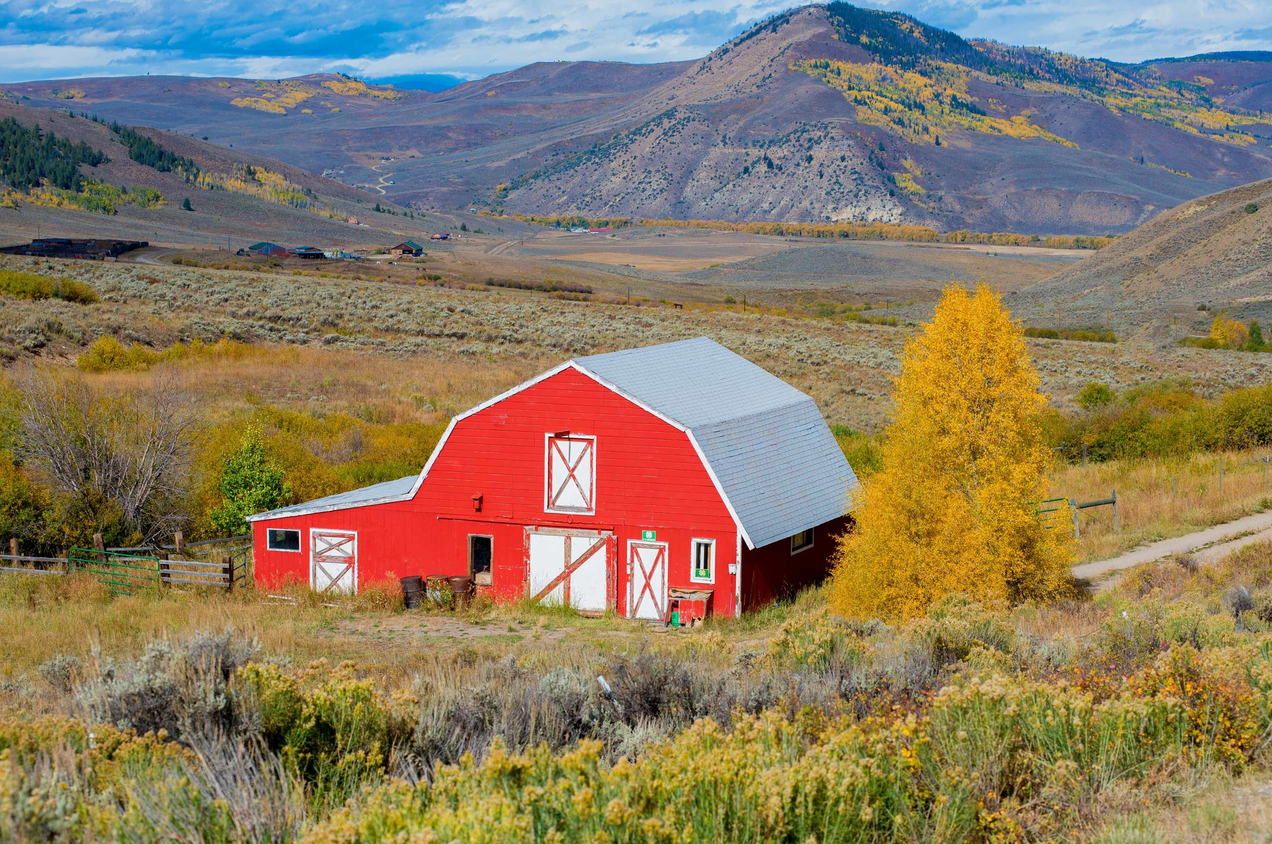Red-Barn-with-Aspen-Tree-copy.jpg