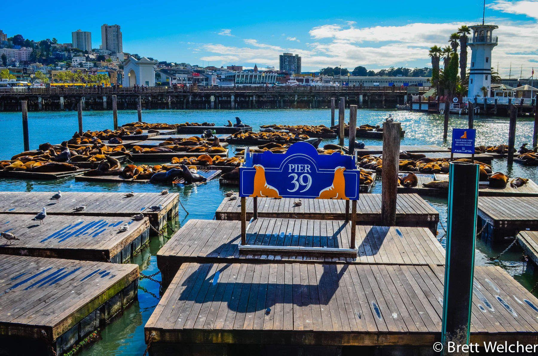 Pier 39 - San Francisco, California