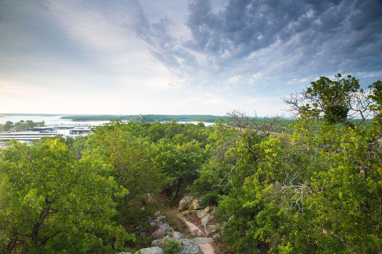 Buzzard's Roost Scenic View