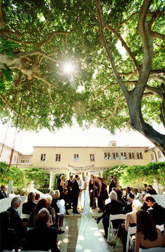 10533_2_ceremony_trees_sun