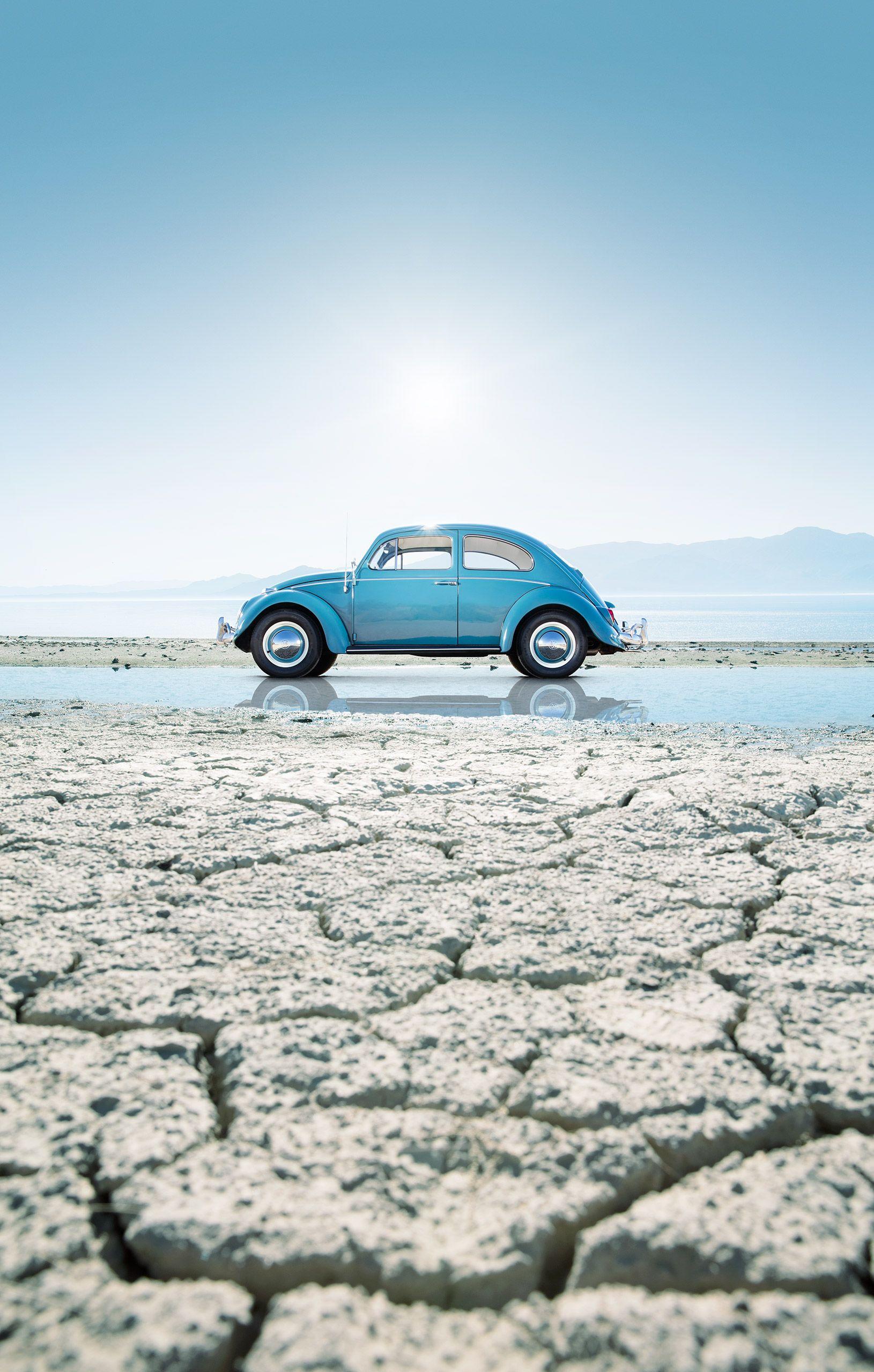 Beetle1_v3.jpg