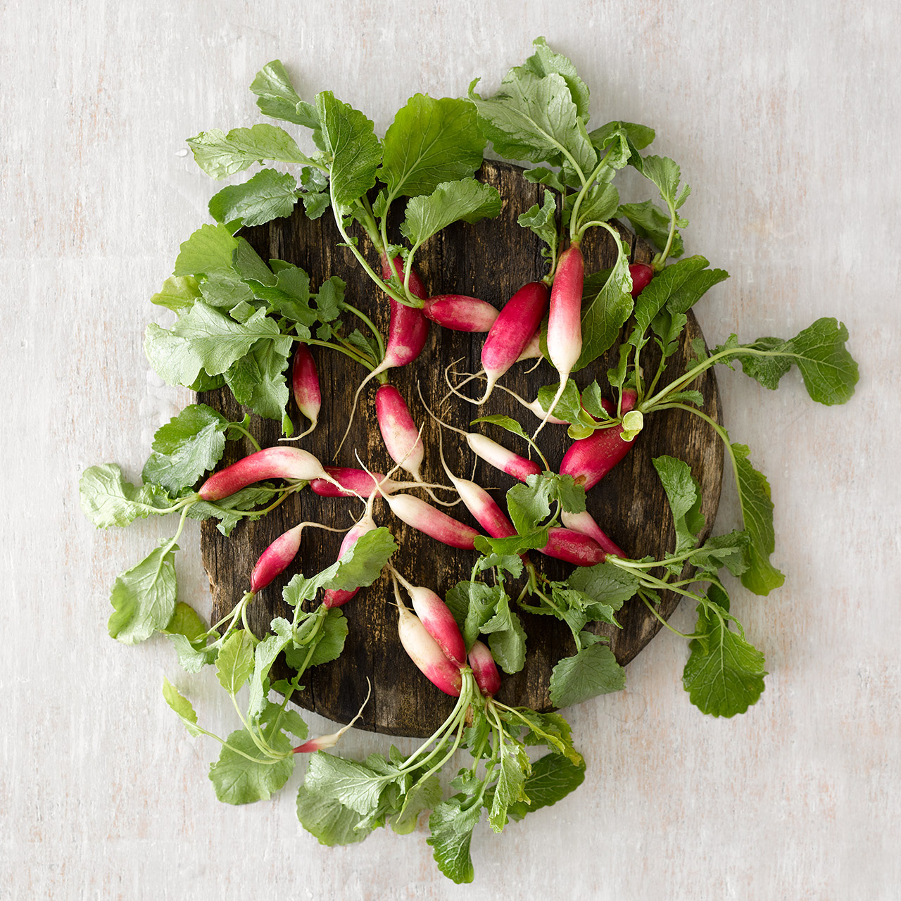 English Breakfast Radishes