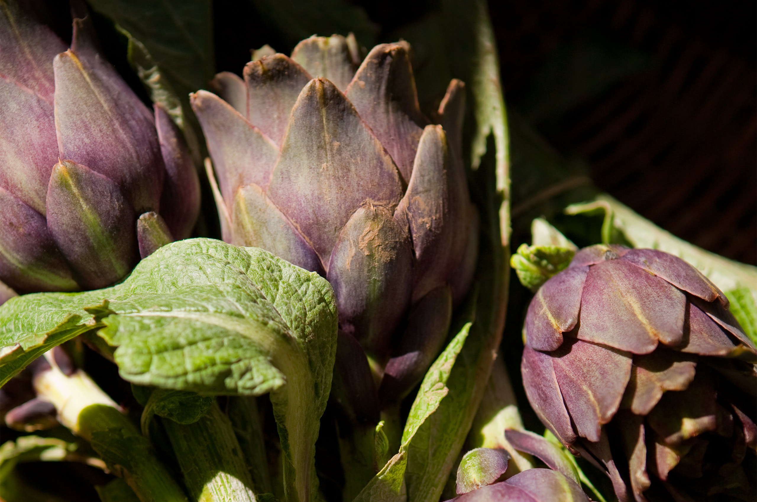 Purple Artichokes Farmers Market Paris, France