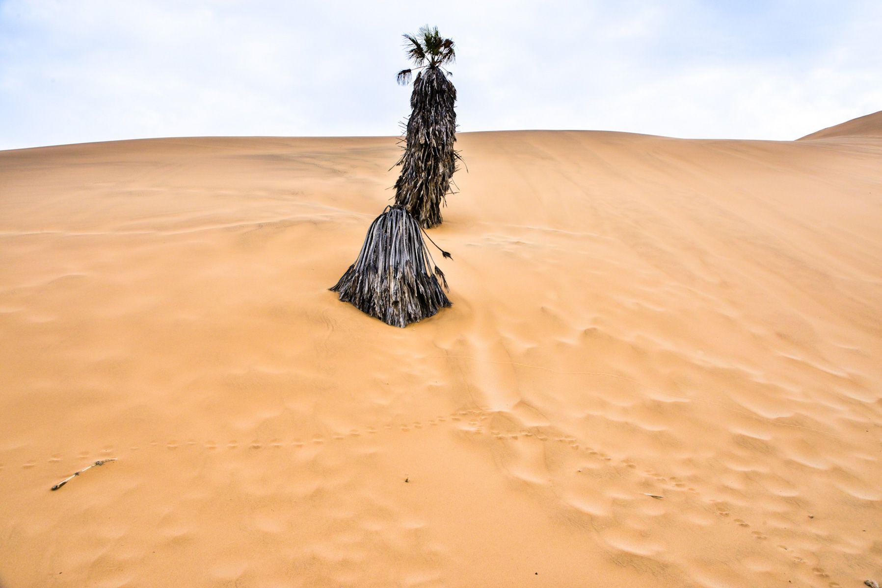 Namibia_2.jpg