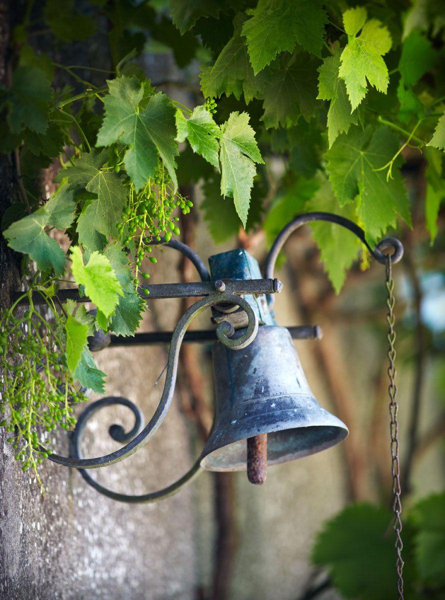 1france_vines_bell_1034.jpg