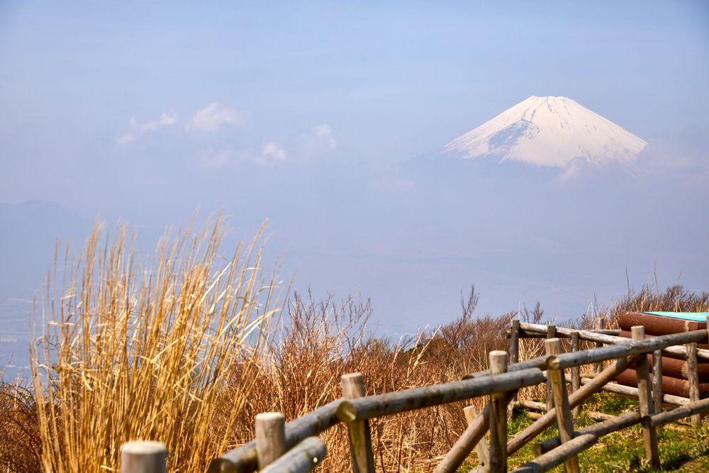 180401_NM_Japan_1266.jpg