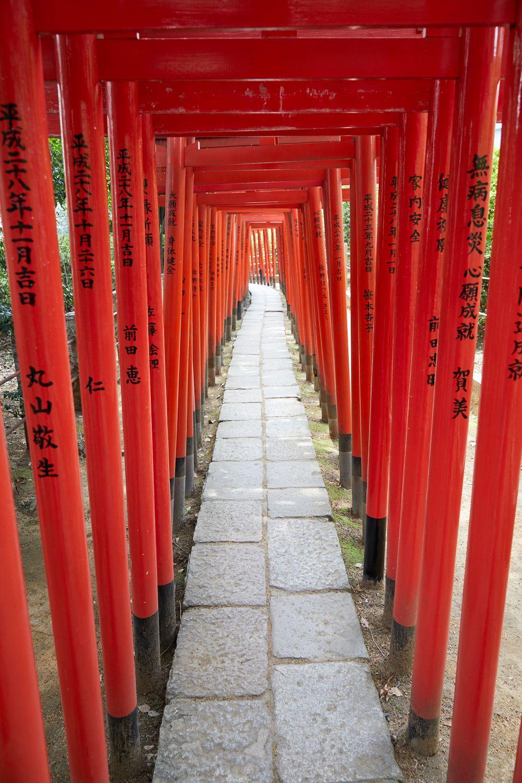 180401_NM_Japan_0491.jpg