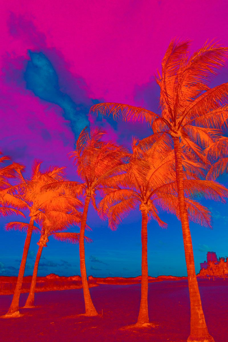 Vertical Psychedelic Palm Trees