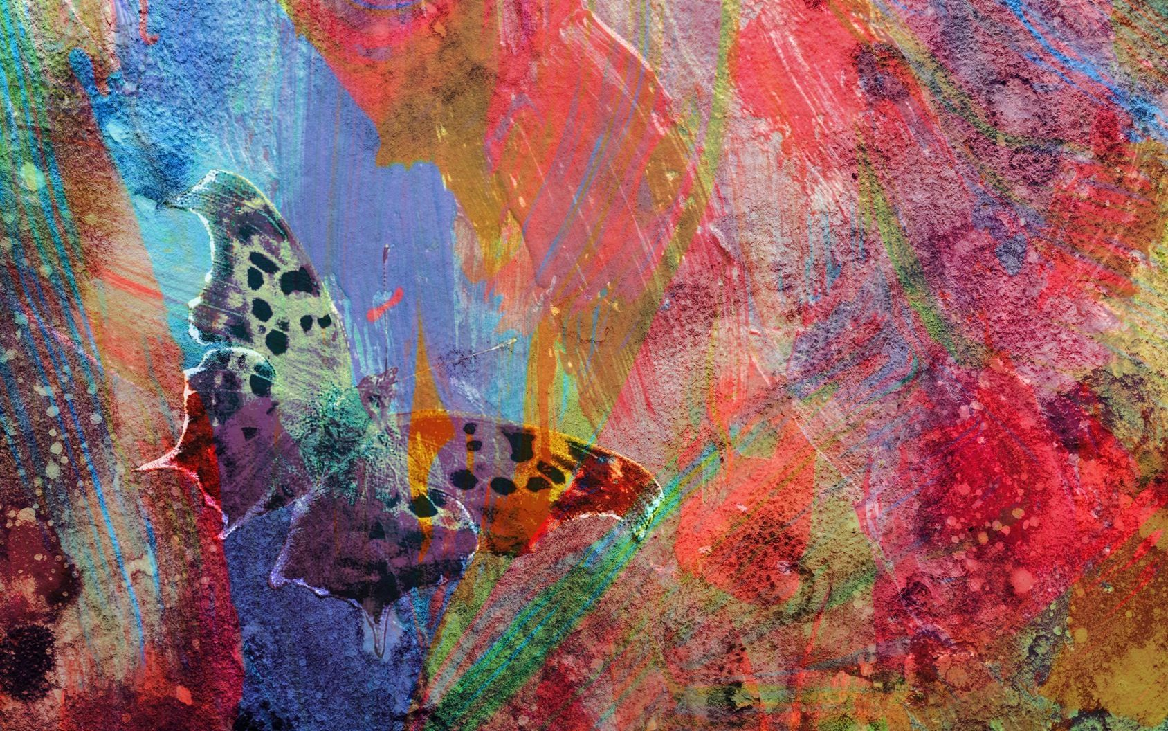 Abstract Butterfly in Red & Pink