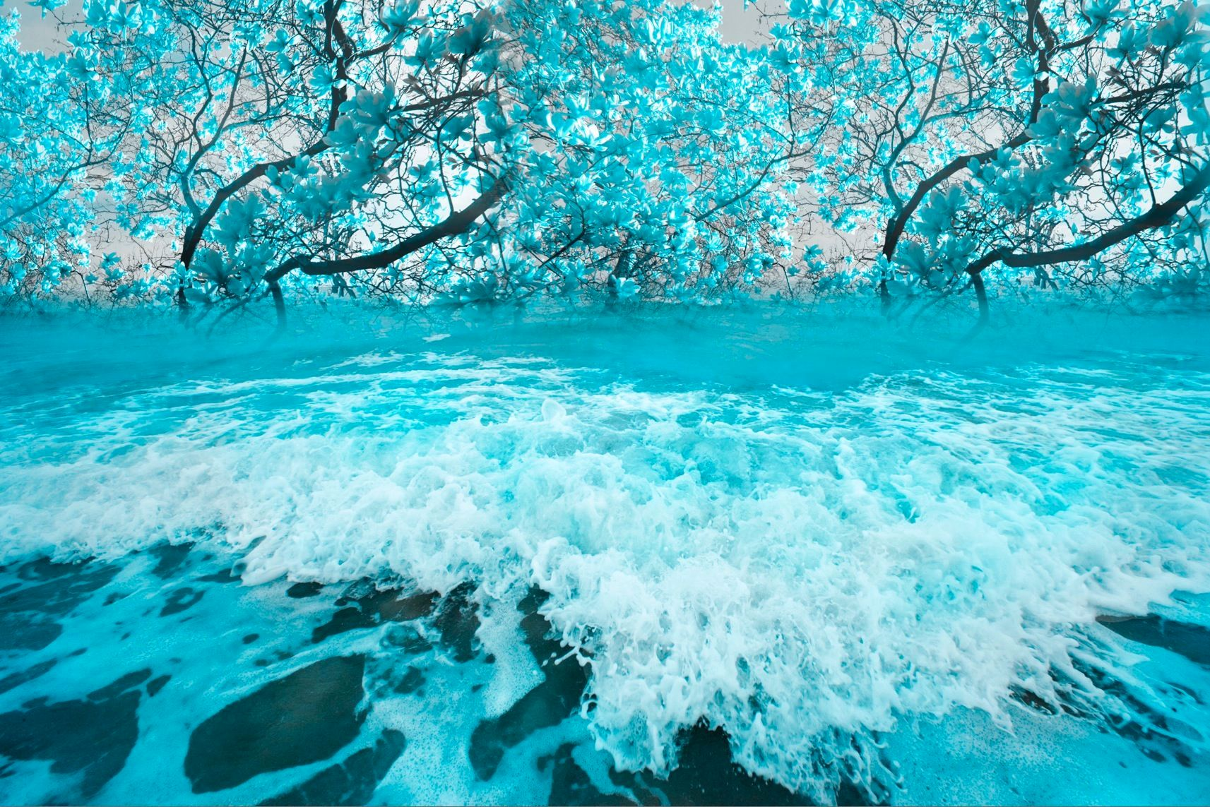 "Deep Turquoise Ocean in Bloom 40"" x 60"""