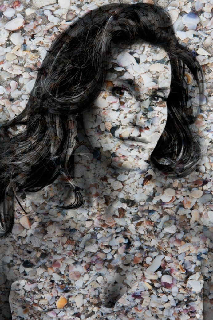 "Jenner Potrait of Shells in Natural 60"" x40"""