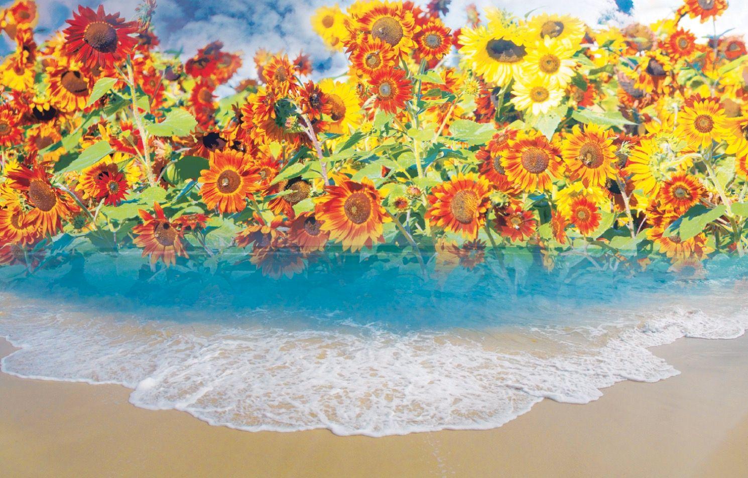 "Caribbean Sunflower Ocean 35""x60"""