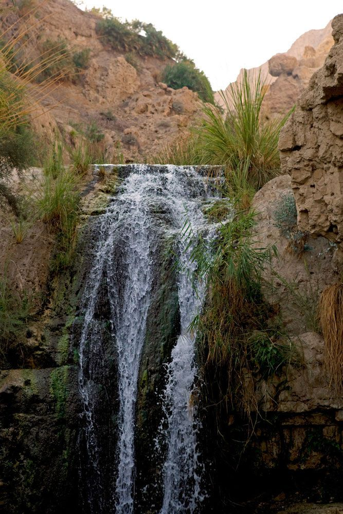 King David Waterfall in Natural Vertical