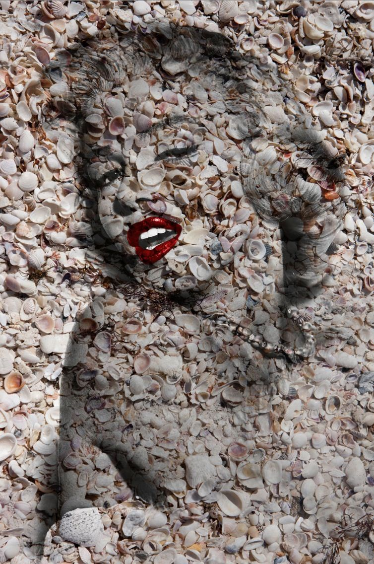 "Marilyn Portrait of Shells in Natural   #1 60"" x 40"""