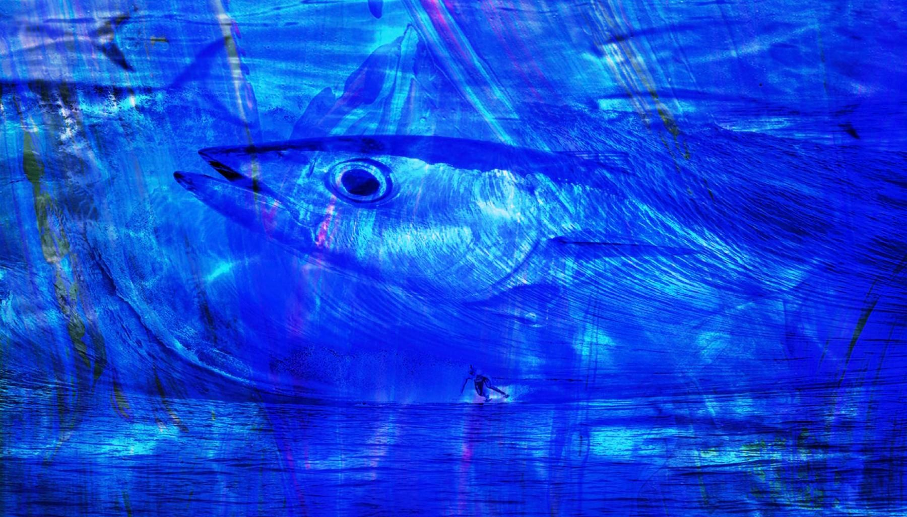 Abstract Fish with Surfer in Blue