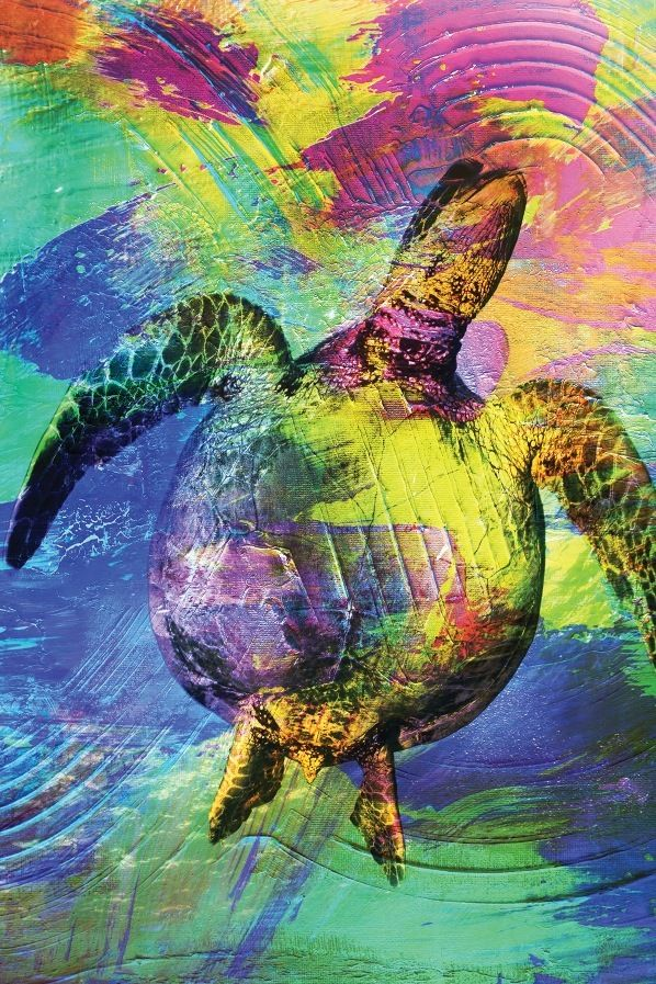 Turtle Abstract