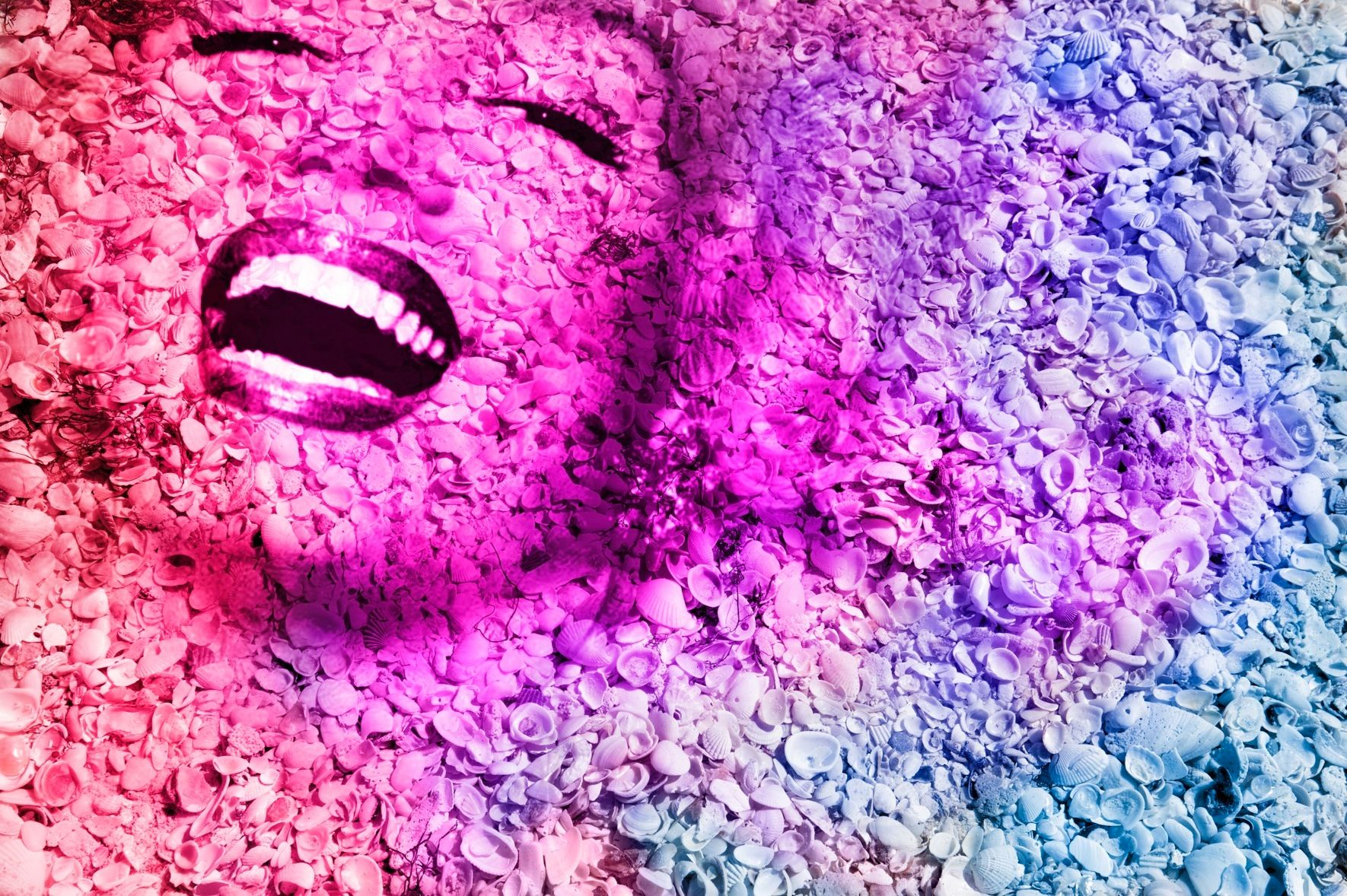 "Marilyn Portrait of Shells in Rainbow #2  40"" x 60"""