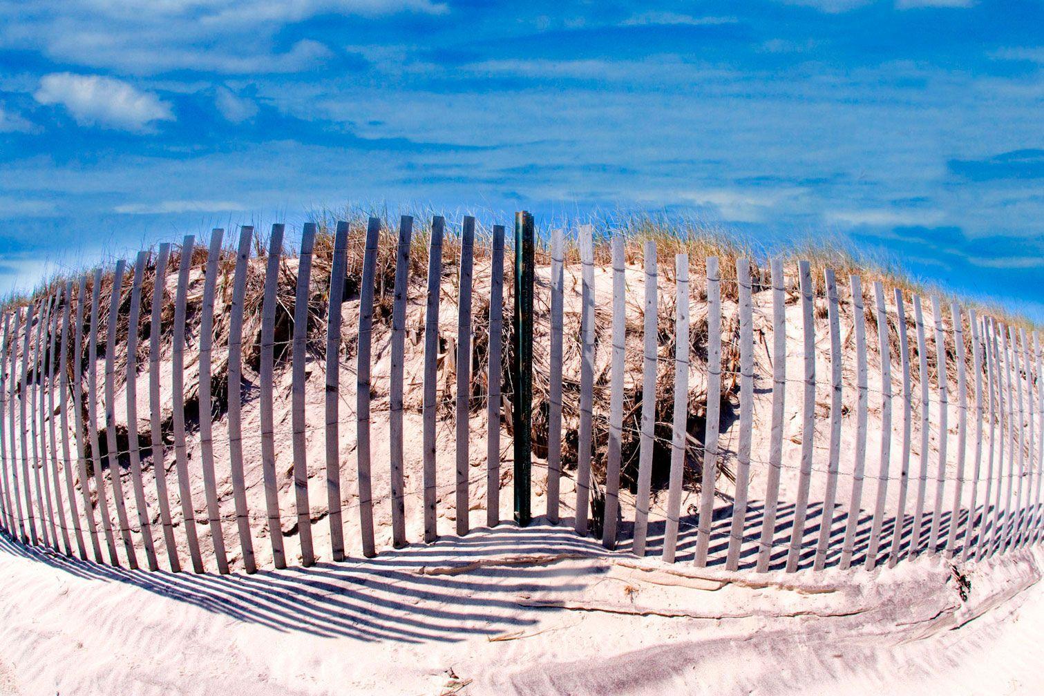 """Beach Fence 40""""x60"""""""