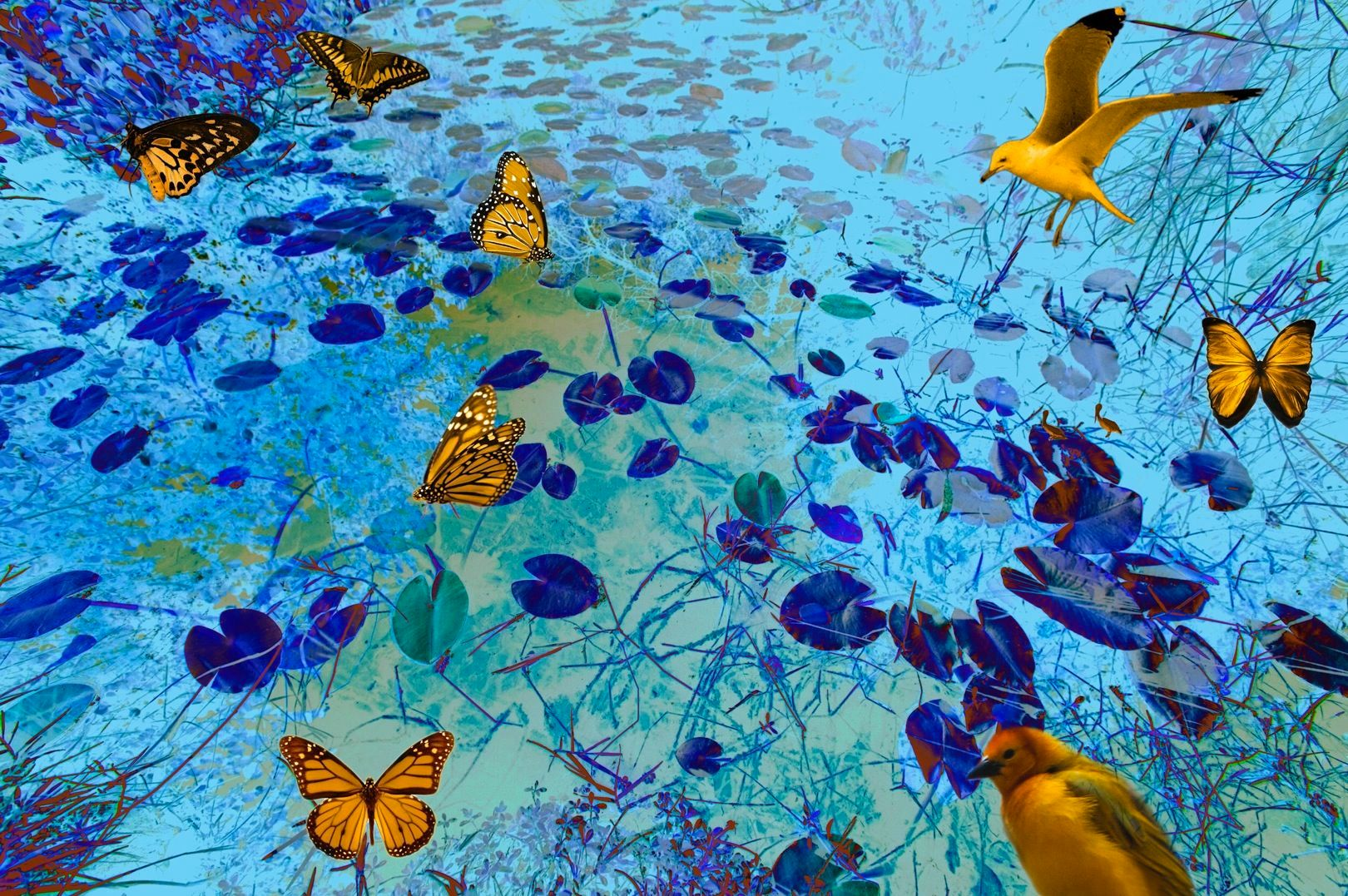 Blue Marsh with Butterflies