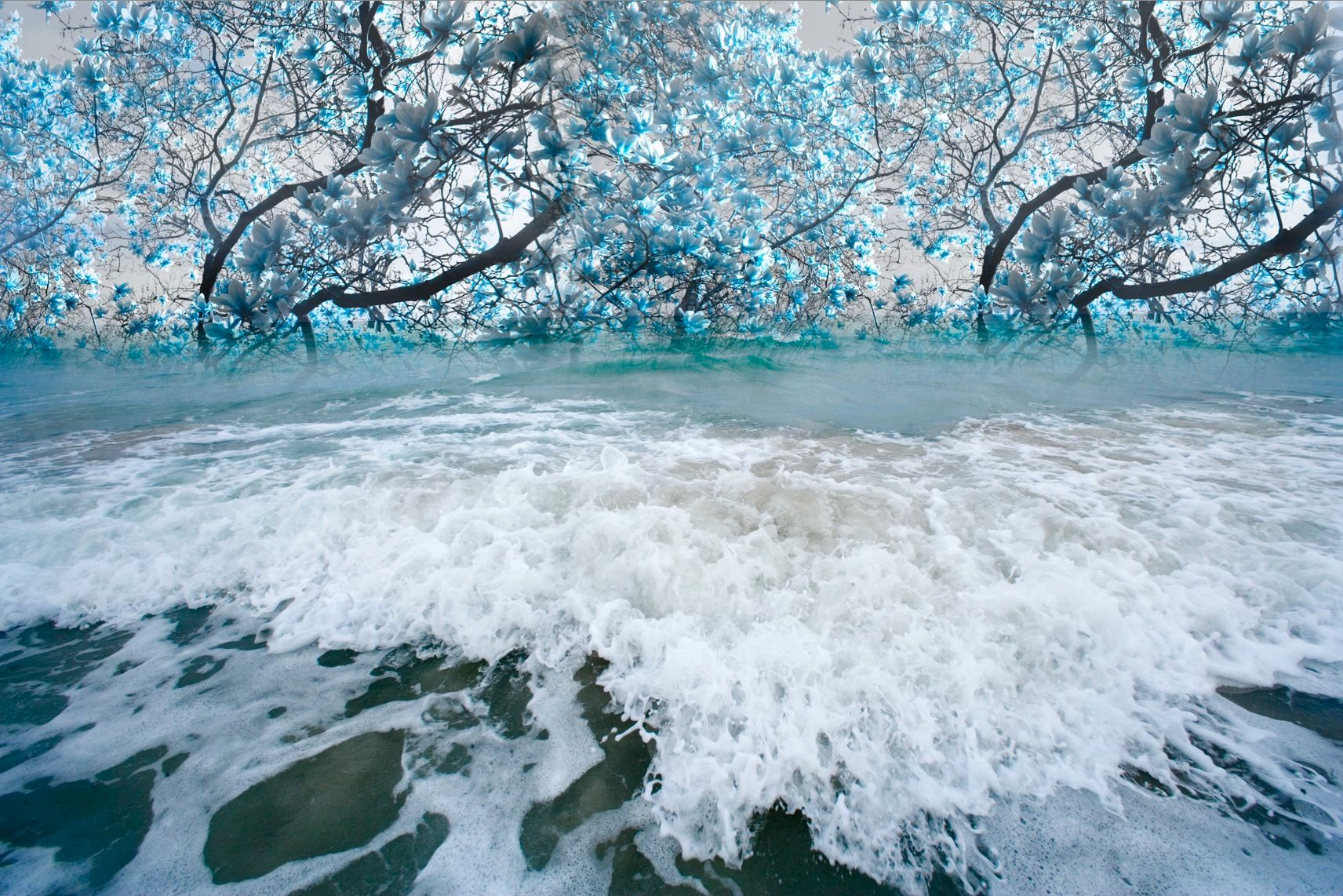 "Light Turquoise Ocean in Bloom 40"" x 60"""