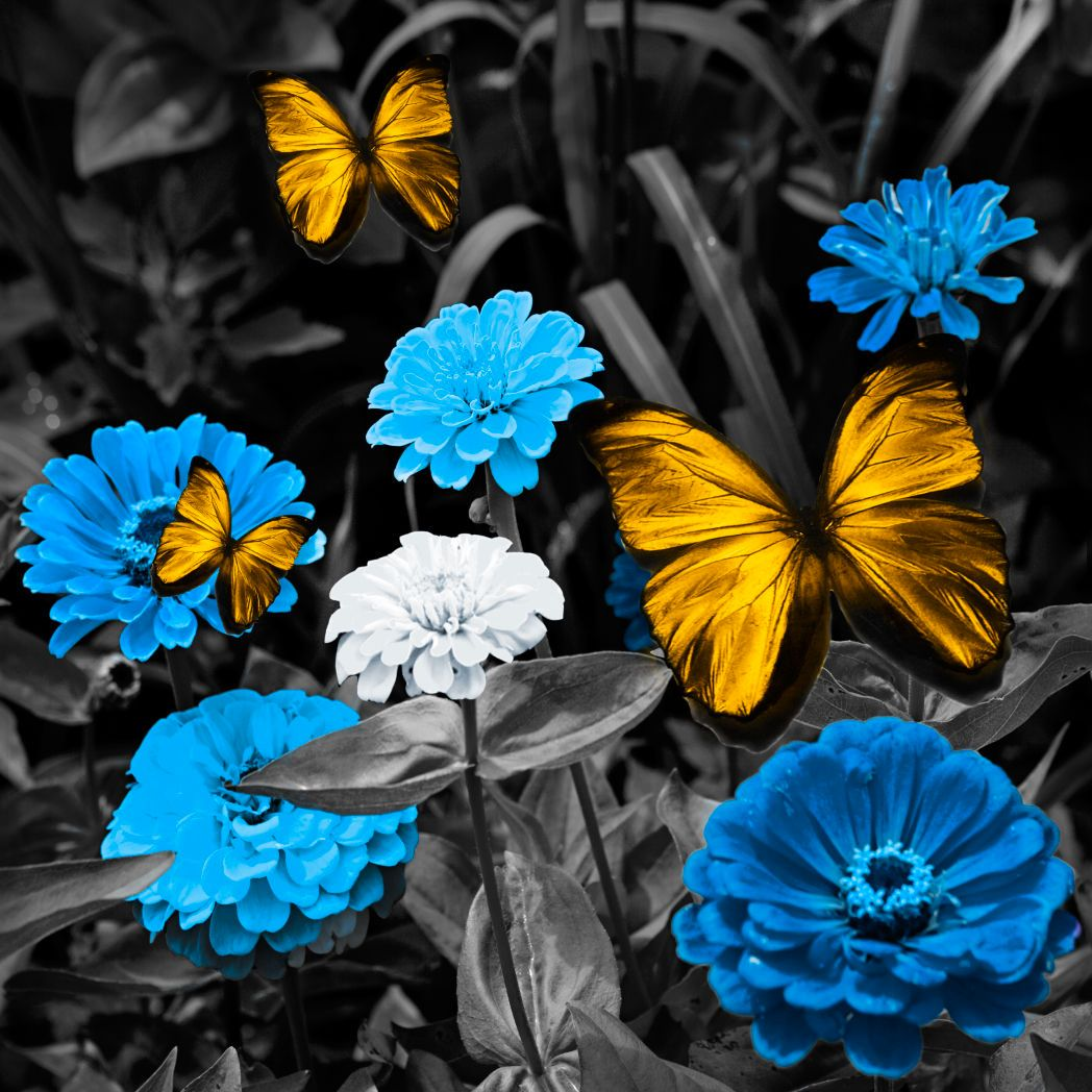 BW Blue Meadow with Golden Butterflies