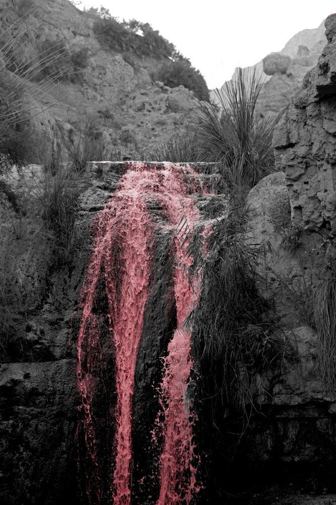 King David Waterfall Vertical in BW and Pink