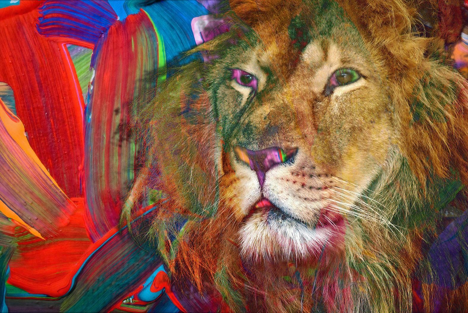 Abstract Lion in Rainbow