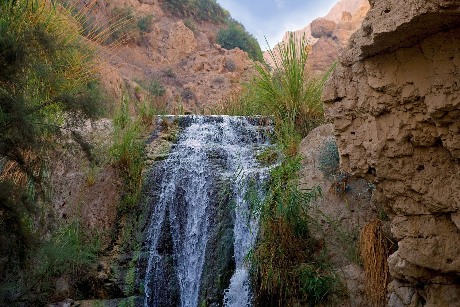 King David Waterfall in Natural Horizontal