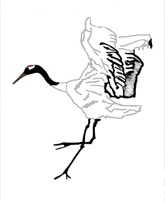 Crane-Banner.jpg