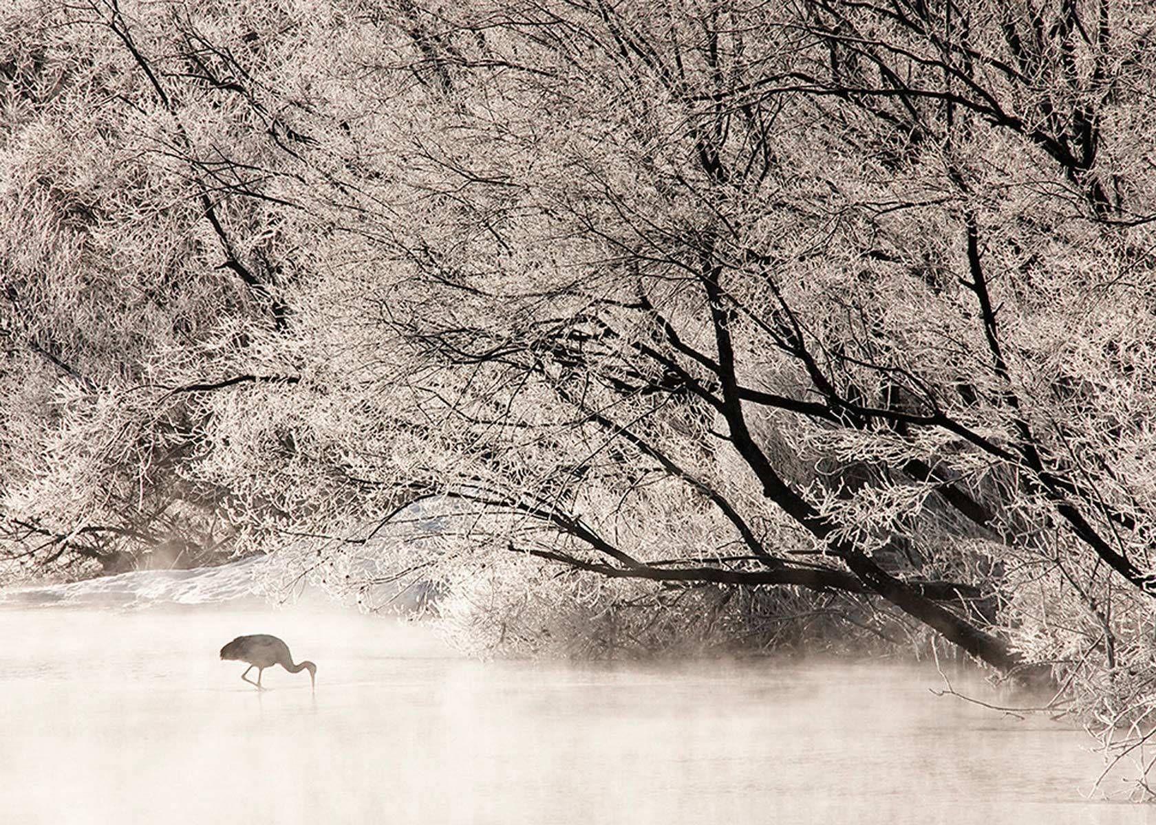 Solitude in Hoar Frost, Red-crowned crane from Otowa Bridge, Tsu