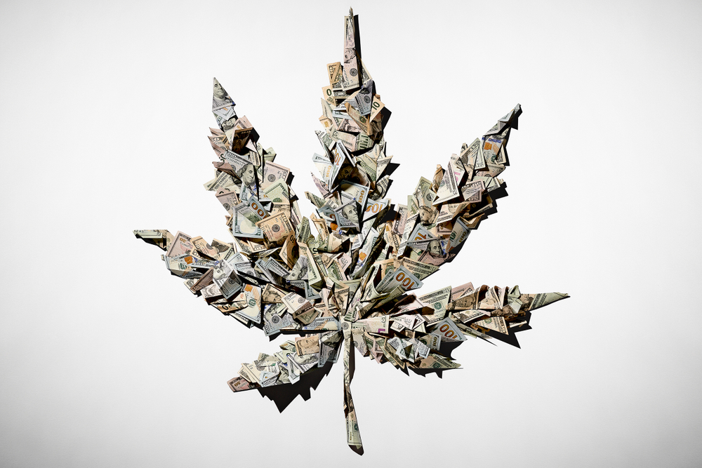 MoneyMarijuana_Workbook.jpg