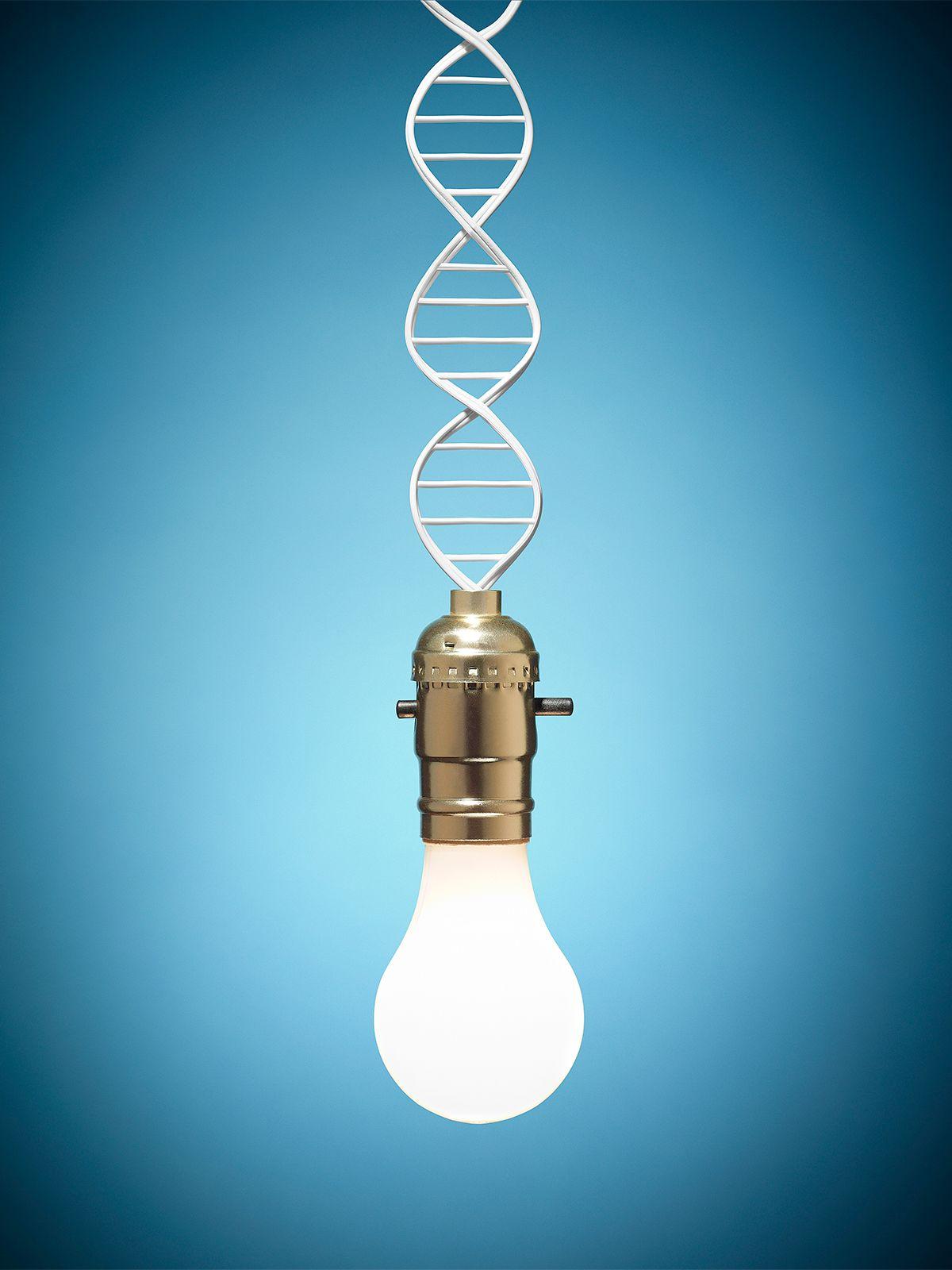 DNA_LightBulb_Workbook.jpg