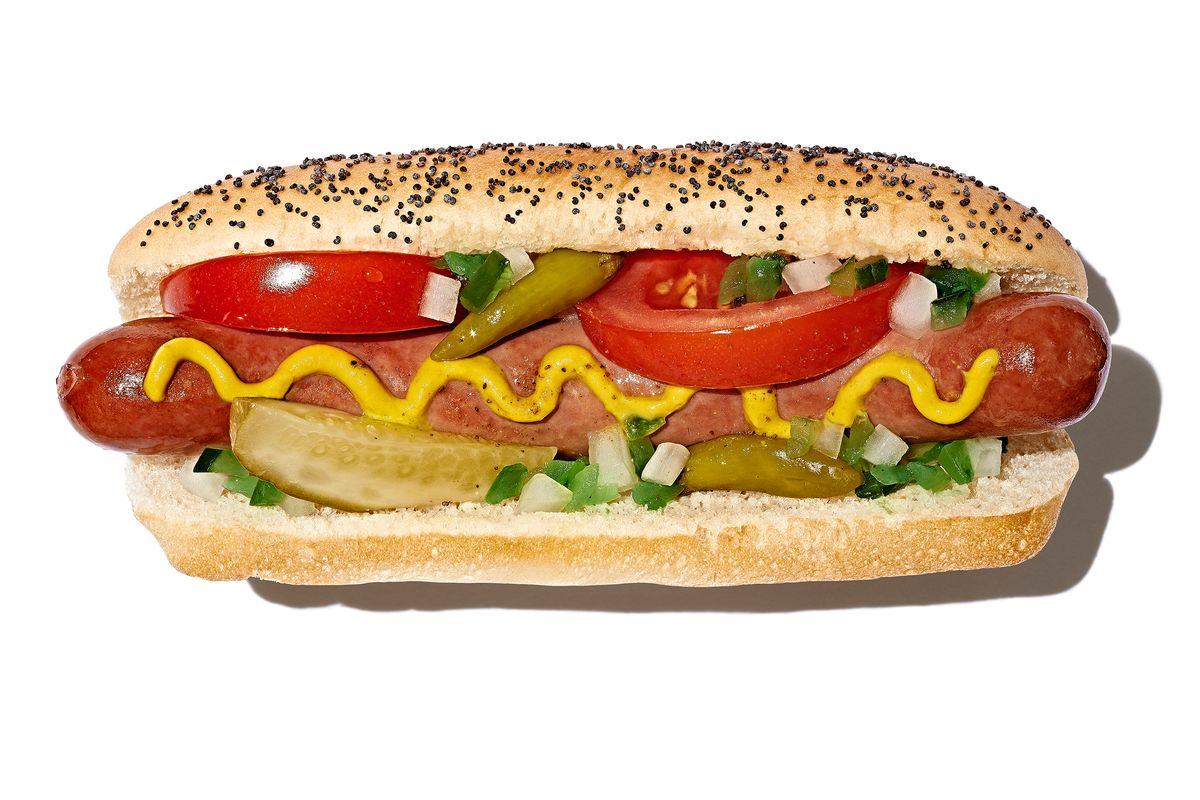 Hotdog01_Workbook.jpg