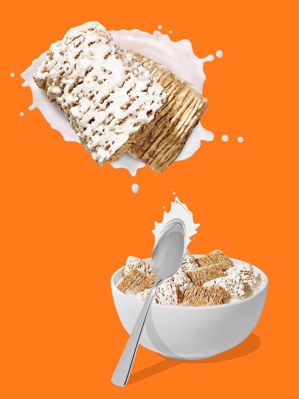 FrostMiniWheats_Splash_Workbook.jpg