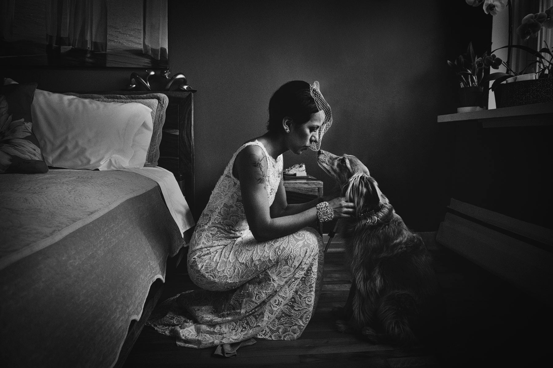 Bride with her dog, wedding in Montreal