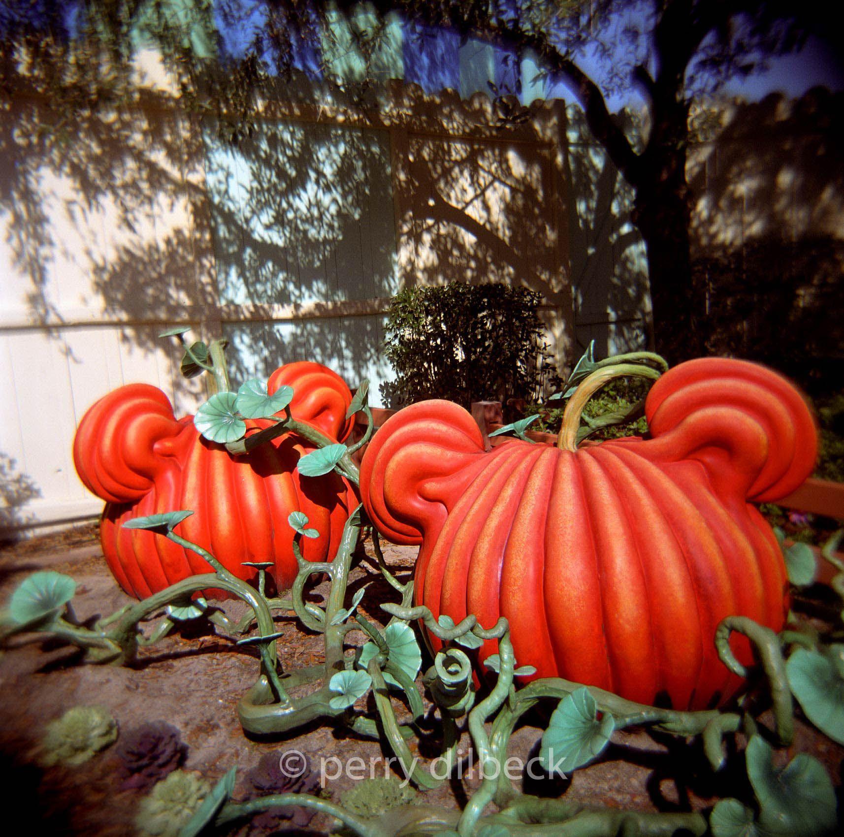 34mickeyspumpkin1.jpg